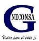 GRUPO NECON S.A DE C.V