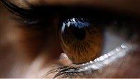 Descubren nueva terapia génica que puede curar la ceguera