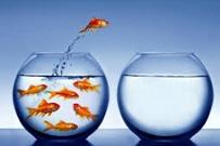 Para, mira y sigue. La mejor estrategia de cambio