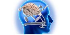 7 Cosas Que Matan Al Cerebro