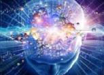 ¿Cómo dirigir el cerebro hacia nuestros objetivos?