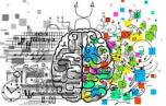 ¿Qué le pasa a tu cerebro cuando le falta la otra mitad? Este es su 'superpoder'