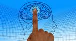 Usamos 10% del cerebro: ¿mito o realidad?
