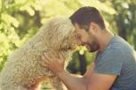 5 razones por las que tu perro es tu mejor amigo