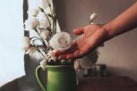 8 maneras de sentir más gratitud todos los días