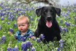 ¿Por qué los perros son excelentes mascotas para tus hijos?